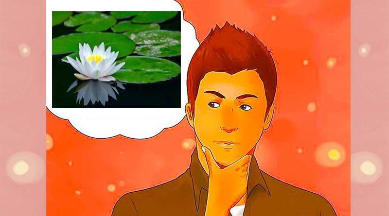 mikirin bunga teratai