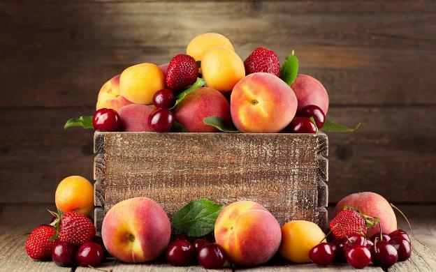 buah obat