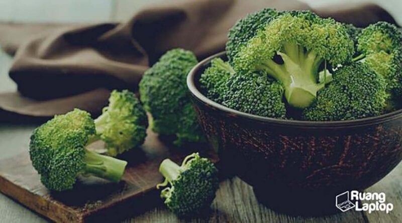 cara menanam brokoli